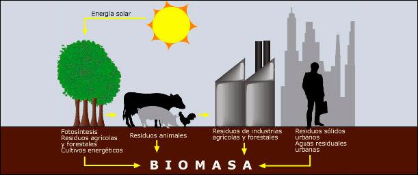 Factores a considerar al aplicar energía por Biomasa