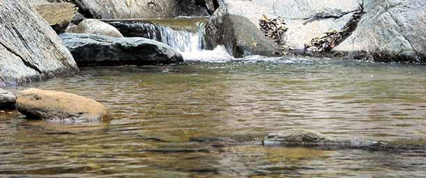 Pozas de San Juan, secreto de aguas dulces en Margarita