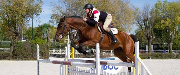 ¿Qué es Equitación?