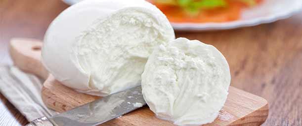 ¿Cómo hacer queso?