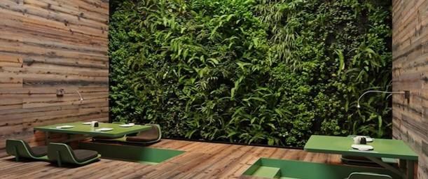Los jardines verticales, ¿Moda o solución ambiental?