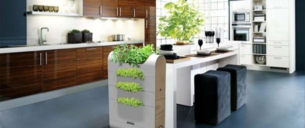 Ideas para incorporar la ecología a la cocina