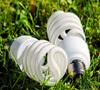 La iluminación y la ecología