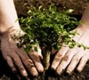 ¿Cómo reducir nuestra huella ecológica?