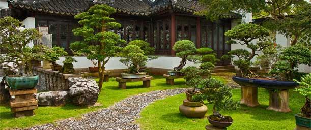 10 Consejos de Feng Shui para jardinería