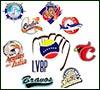 Cuáles son los equipos que conforman la LVBP